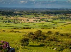 Land banking scheme shut down - Image
