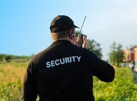 Dartford: Security - Image
